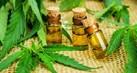 cannabis-tahu1_thumb.jpg