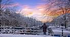 winter-holiday-tahu1_thumb.jpg