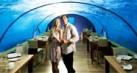 restoran_unik_dunia_thumb.jpg