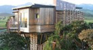tree-house-tahu1_thumb.jpg