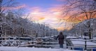 winter-holiday-tahu1_thumb.jpg