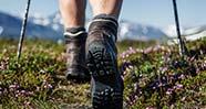 10 Tips Berguna Sebelum Memutuskan Untuk Mendaki Gunung