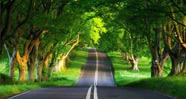 10 Jalan Paling Mengagumkan Di Dunia