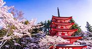 10 Hal Unik Yang Bisa Ditemukan Di Jepang