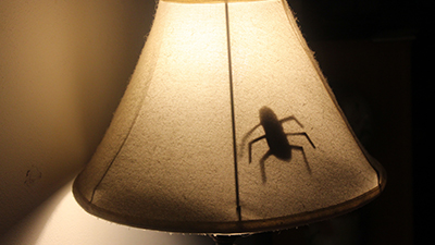 lamp prank