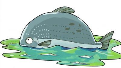ikan besar dalam kocal kecil