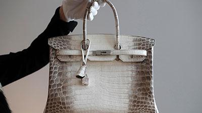 Hermès Himalaya Birkin Bag in Niloticus Crocodile