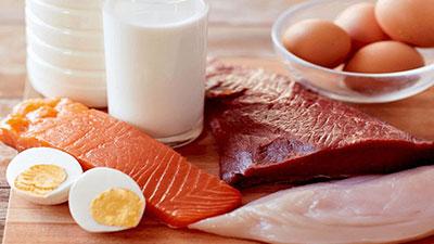 protein hewani
