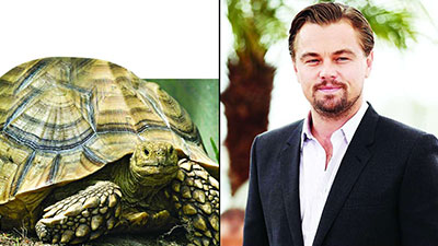 Leonardo DiCaprio