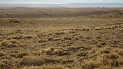 Patagonia Desert