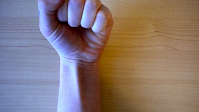 long palmar muscle