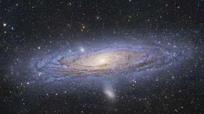 cosmic ancestry