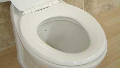 dudukan toilet