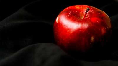 Dimakannya buah terlarang pada kitab kejadian adalah awal dosa dan kematian manusia