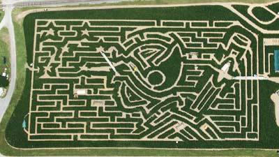 Cherry Crest Adventure Farm mempunyai salah satu labirin paling rumit dunia