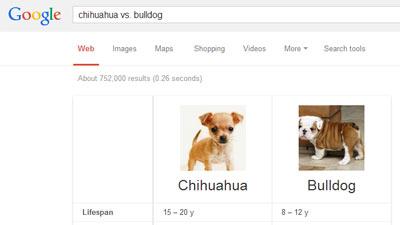 Google menyediakan fitur perbandingan hewan, planet, dan makanan dalam pencariannya