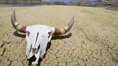 Death Valley adalah tempat paling panas yang ada di bumi ini