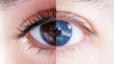 Untuk membuktikan bahwa indera keenam hanyalah perspesi visual maka dilakukan eskperimen dua gambar