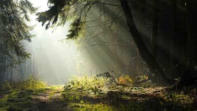 Dalam mitologi norwegia, Dagr dan Nott adalah cikal bakal dimulainya siang dan malam