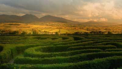 Peace Maze adalah salah satu dari 10 labirin terumit yang pernah ada di dunia
