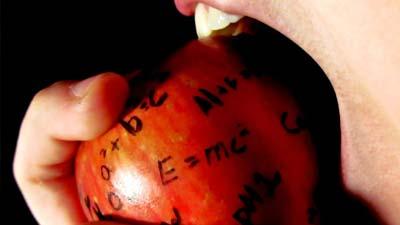 Apel pengetahuan dimakan