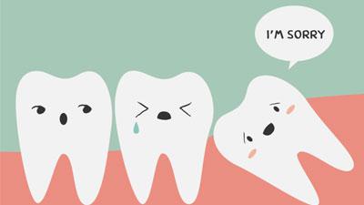 Gigi bungsu sebagai gigi graham ketiga yang tidak berguna