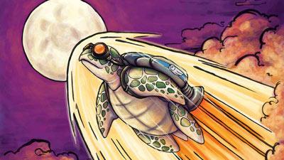 Kura-kura diluncurkan ke luar angkasa