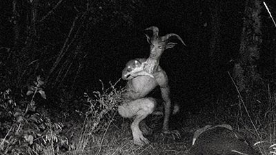 maryland goatman