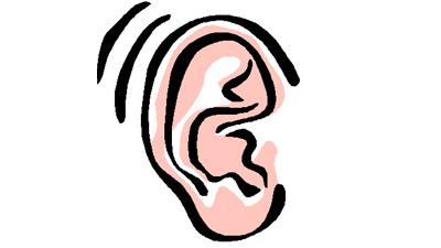Kuping yang bergerak karena mendengar sesuatu