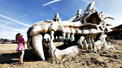 Tulang naga di pantai untuk sebuah iklan