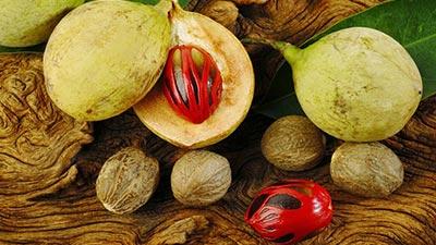 buah pala