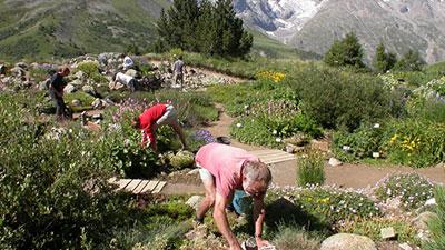 Lautaret Alpine Botanical Garden