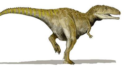 Mapusaurus