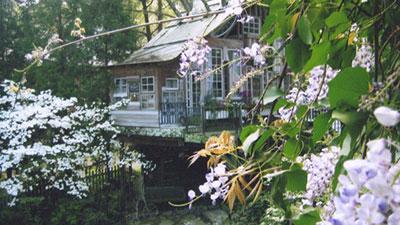 Reclaimed Tree Houses