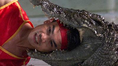 crocodile trainer