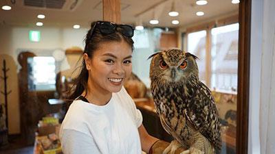 Owl Cafe & Bar Owl Village