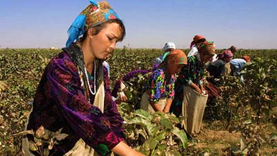 Uzbekistan agricultural