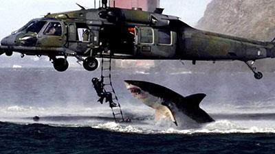 shark vs helicopter